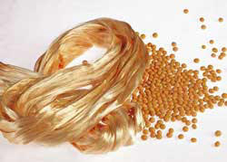 soybean_fiber